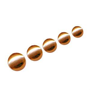 German Conchos - Gold