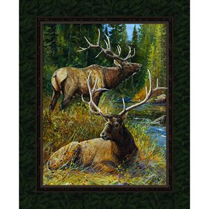 Wild Wings - Lazy Afternoon Wall Hanging