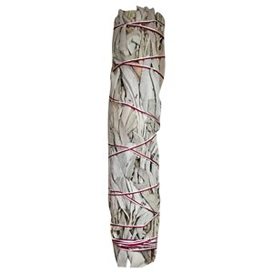 White Sage Bundle 8 - 9""