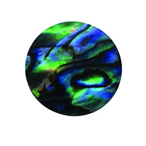 Shell Shapes - Paua Circles, 20mm  (12 per pack)
