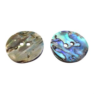 Paua Shell - 25 mm