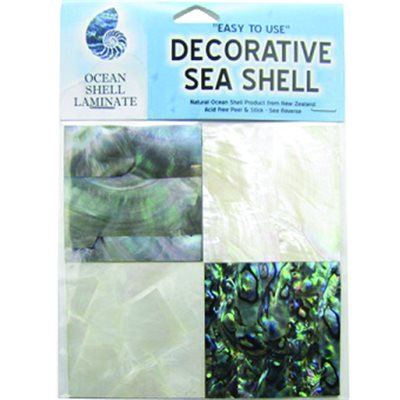 Shell Veneers - Natural Tints (4 Pack)